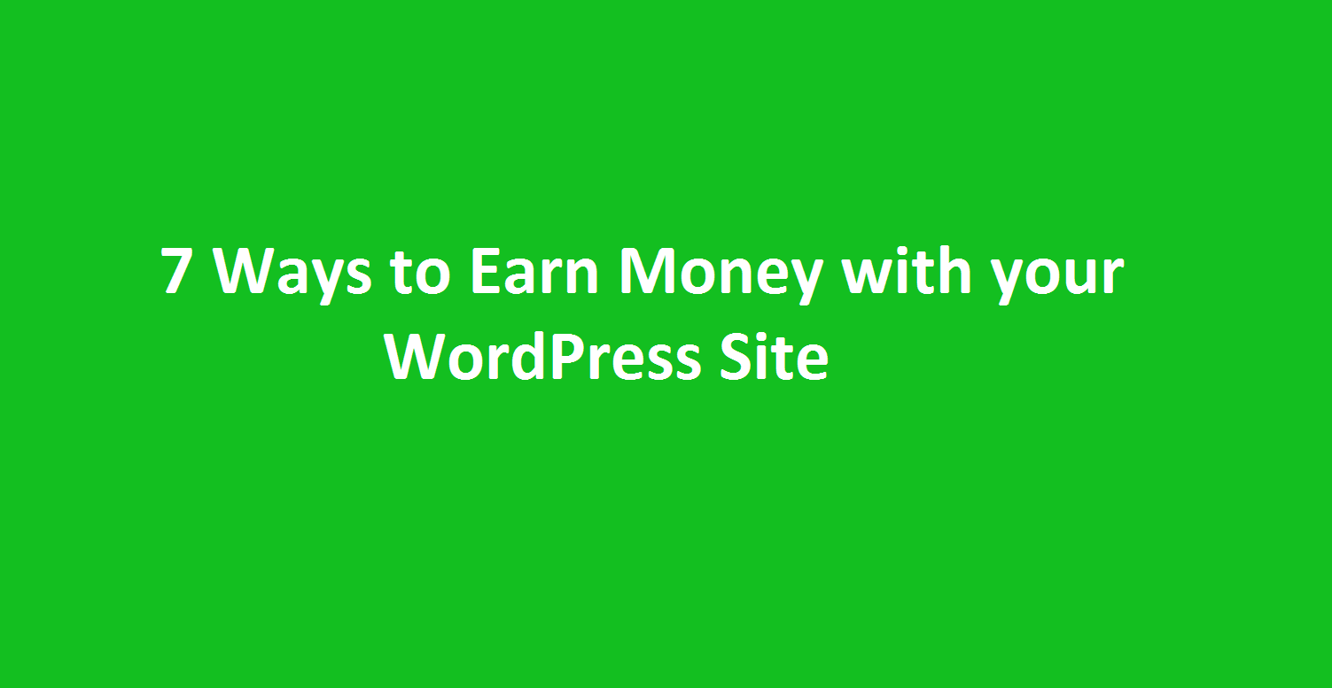 earn money with wordpress site
